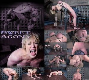 REAL TIME BONDAGE: Feb 25, 2017: Sweet Agony Part 3 | Dee Williams