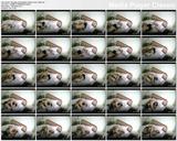 http://img251.imagevenue.com/loc362/th_11765_Possiblyreallesbianhiddencamvideo.avi_thumbs_2017.12.15_21.41.46_123_362lo.jpg