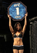 Arianny Celeste - UFC on Fuel TV: Sanchez vs. Ellenberger [x2]