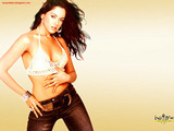 Sameera Reddy Hi-res (1600px) wallpaper